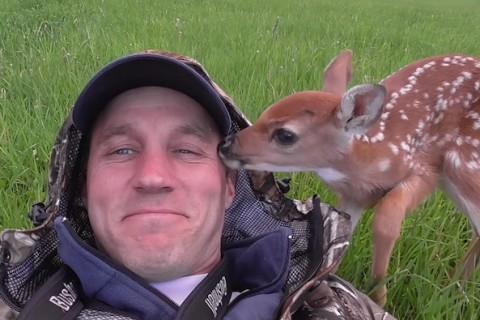 8 baby deer
